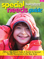Special Needs Guide - 2019